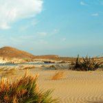 Hostal las Dunas - Cabo de Gata